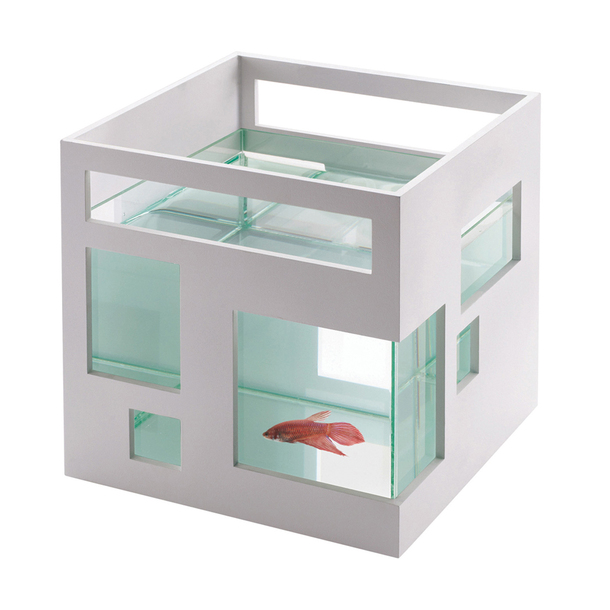 Teddy Luong's Fish Hotel-2