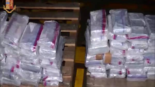 La coca dei Narcos dal Sud America a Milano: intercettato un quintale di coca