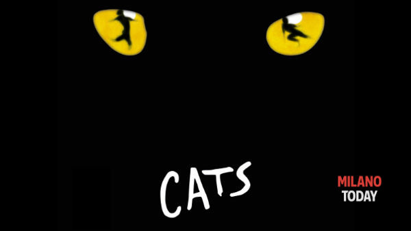 "Musical ""Cats"" a Milano dal 26 marzo 2014"