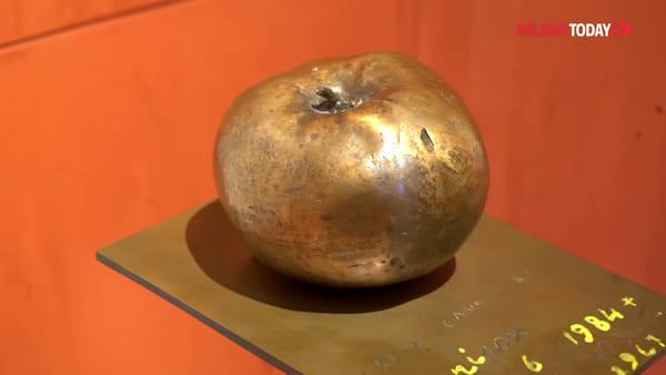 Milano, il museo della filosofia apre all'Università Statale: giochi ed esperimenti sulla logica e la percezione