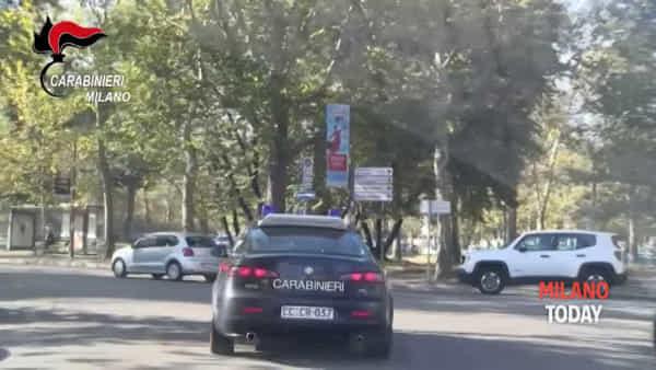 Milano, ritrovata una serra di marijuana nella centralissima zona Vercelli. Il video