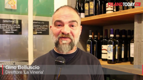 Vino e olio sfuso, ecco dove trovarli nel cuore di Milano