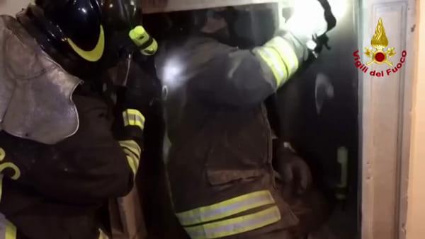 Nerviano, gufo incastrato da quattro giorni nel camino di una casa: salvato dai pompieri. Video