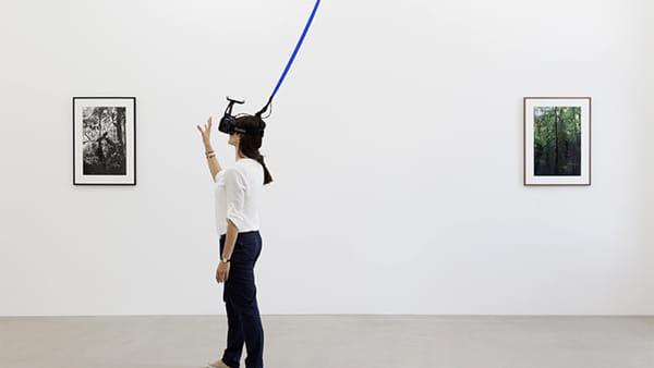 Ologrammi, realtà virtuale e installazioni 'con la foresta pluviale': Steegmann Mangrané in mostra