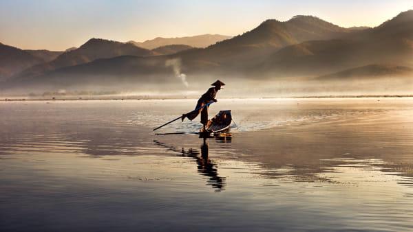 """""""Animals"""": dal 16 dicembre al 31 marzo la mostra di Steve McCurry al Mudec"""