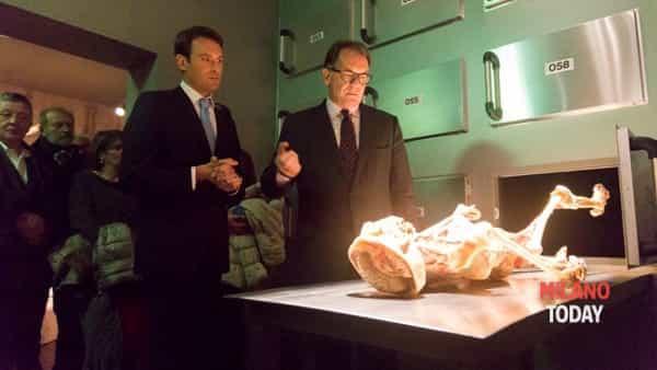 Real Bodies, dal 1° ottobre a Milano la mostra di cadaveri e organi umani