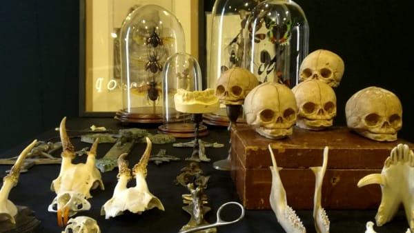 East Market, il mercatino vintage si tinge di horror per Halloween