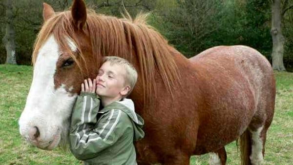 """""""E....state in maneggio!"""": fino al 30 giugno equitazione per bambini all'Idroscalo"""