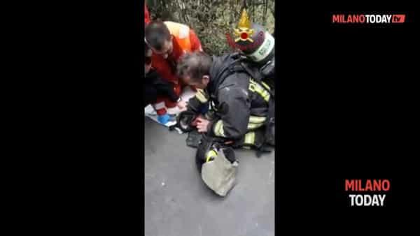 Vigili del fuoco salvano un gatto da un incendio rianimandolo col respiratore. Video