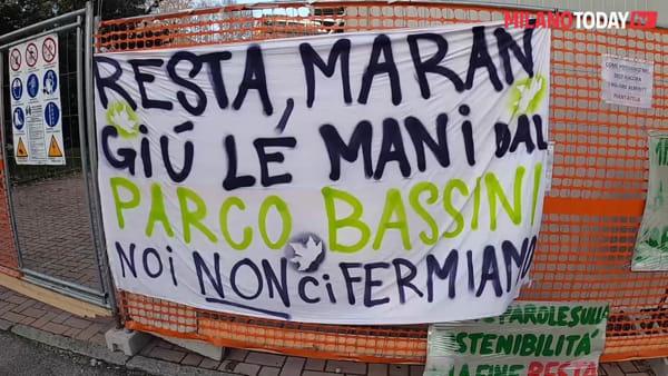 """Alberi tagliati a Milano, il sindaco replica ai Fridays for Future: """"Scelta dolorosa, ma necessaria"""""""