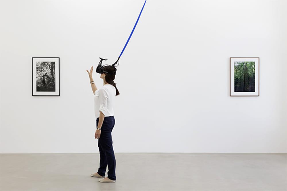 Una delle opere in mostra (da pirellihangarbicocca.org)