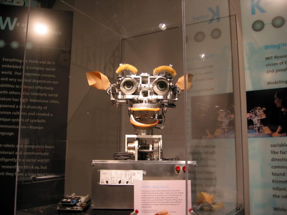 Intelligenza artificiale (da Wikipedia/Commons)