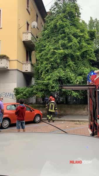 Incendio in Città Studi, via Forlanini, un morto (1)